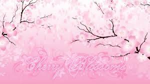 Falling Petals Cherry Blossom Flourish Background Youtube
