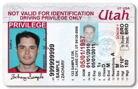 - License California Restrictions Forexxilus Drivers