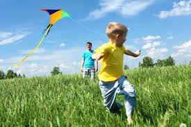 Image result for kite photography