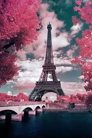 eiffel tower pink flowers