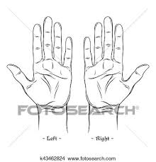 Palmistry Or Chiromancy Chart Blank Template Isolated On