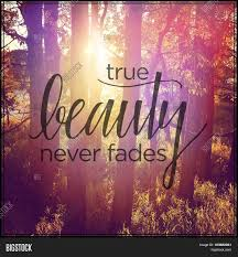 Beauty Never Fades Quotes Best Of Inspirational Image Photo Free Trial Bigstock