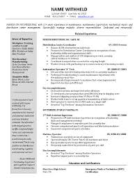 Warehouse Manager Resume Sample Nardellidesign Com
