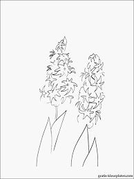 Kleurplaat Hartjes En Bloemen Soort Kleurplaten Bloemen Volwassenen