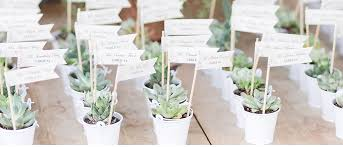 Amazing Succulent Wedding Favors Within Succulents For Sale