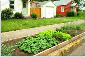 small city garden in curb strip