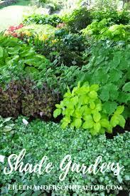 shade gardens ideas hostas