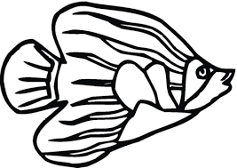 Small Picture Angelfish 7 coloring page Free Printable Coloring Pages