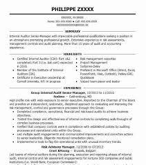 Group Internal Audit Senior Manager Resume Example Sodexo