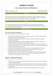 Cv For Account Manager Key Account Executive Resume Samples Qwikresume