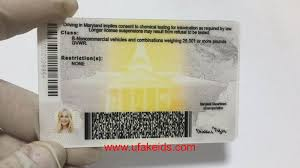 Maryland Buy Id Maker Make A Best – Ids Fake Online