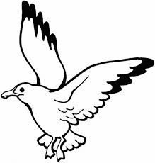 Small Picture Bird Coloring Pages Flying Falcon Animal Coloring pages of