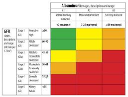Ckd Classification Chart Renal Failure Chart Usdchfchart Com
