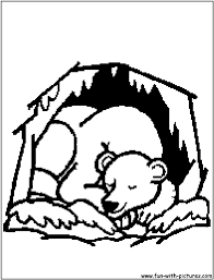 Small Picture Bears Hibernating Clipart images Erdei llatokForest animals