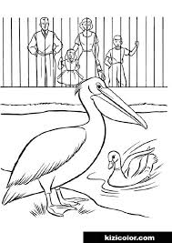 See all formats and editions hide other formats and editions. Zoo Supercoloring 0032 Kizi Free 2021 Printable Super Coloring Pages For Children Zoo Animals Super Coloring Pages