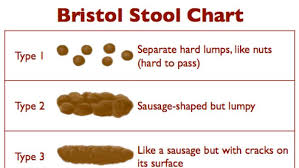 Faeces Bristol Stool Chart The Bristol Stool Chart Abc News Australian Broadcasting