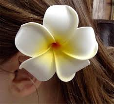 Hawaiian Hair Clip Foam Flower Plumeria And Rhinestone Pink And