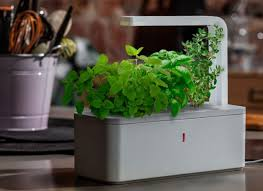 countertop herb garden kit on impressive with best hydro system for yield a smart kitchen