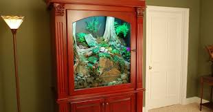 terrarium furniture. custom terrarium gecko inspiration pinterest more terraria bearded dragon and cage ideas furniture f
