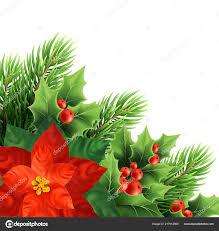 Weihnachten Weihnachtsstern Blume Realistische Vektor