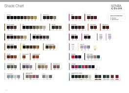 Kenra Color Chart Permanent Hair Color Kenra Professional