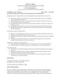 Debt Counselor Sample Resume Podarki Co