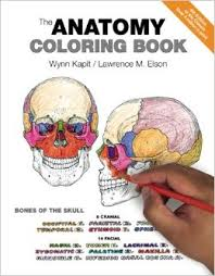 Small Picture The Anatomy Coloring Book 9780321832016 Medicine Health