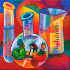 fun enriching science activities for gifted kids life sciencescience lessonsscience