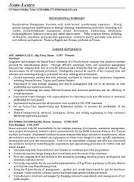 Resume Summary Samples Enchanting Resume Summary Template Manufacturing Executive Resume Example