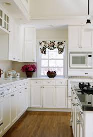 Kitchen Refinishing Refinishing Kitchecn Cabinets Burnaby Coquitlam Vancouver
