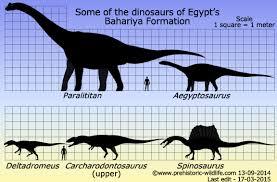 carcharodontosaurus size dinosaurs of egypts bahariya formation jpg