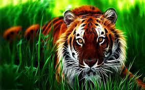 Download 3d tiger Wallpaper download HD ...