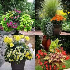 container garden design. Simple Garden To Container Garden Design 1