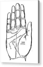 Palmology Chart Palmistry Chart 1885 Acrylic Print