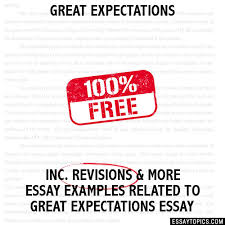 great expectations essay great expectations hide essay types