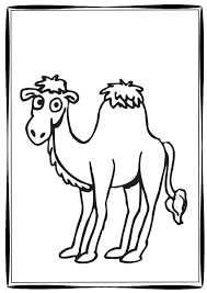 Small Picture Six Camel Coloring Pages for the Classroom