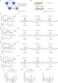 The Ubr 1 Ubiquitin Ligase Regulates Glutamate Metabolism To