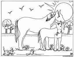 Mare And Foal Coloring Pages