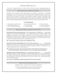 Sample Resume For Senior Business Development Manager Beautiful Cv