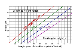 Lhasa Apso Growth Chart Measuring The Lhasa Apso