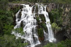 York Region Waterfall Chart Cargill Pledges 30m To Fight Deforestation In Brazils