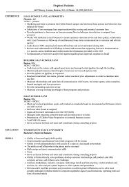 Loan Consultant Resume Samples Velvet Jobs
