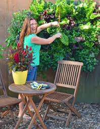 Vertical Kitchen Garden Grow A Living Wall With Shawna Coronado