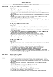 Creative Director Resume Sample VP Creative Director Resume Samples Velvet Jobs 9