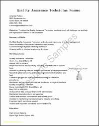 Great Resume Format Delectable Great Resume Format Pelosleclaire