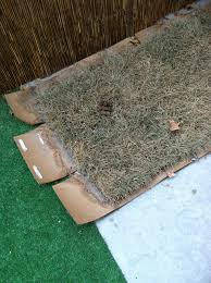 my original idea was getting a child s 3 foot wading pool and filling it with mulch my dog prefers mulch over grass