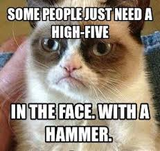 Grumpy Cat on Pinterest | Lol, So Funny and Laughing via Relatably.com
