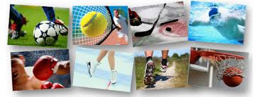 На какой вид спорта выгодно делать ставки