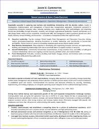 Fancy Executive Resume Writers Reviews Model Documentation