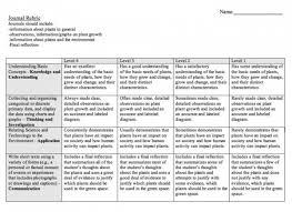 Plant Growth Observation Chart Final Assessment Task Mr Hasans Class